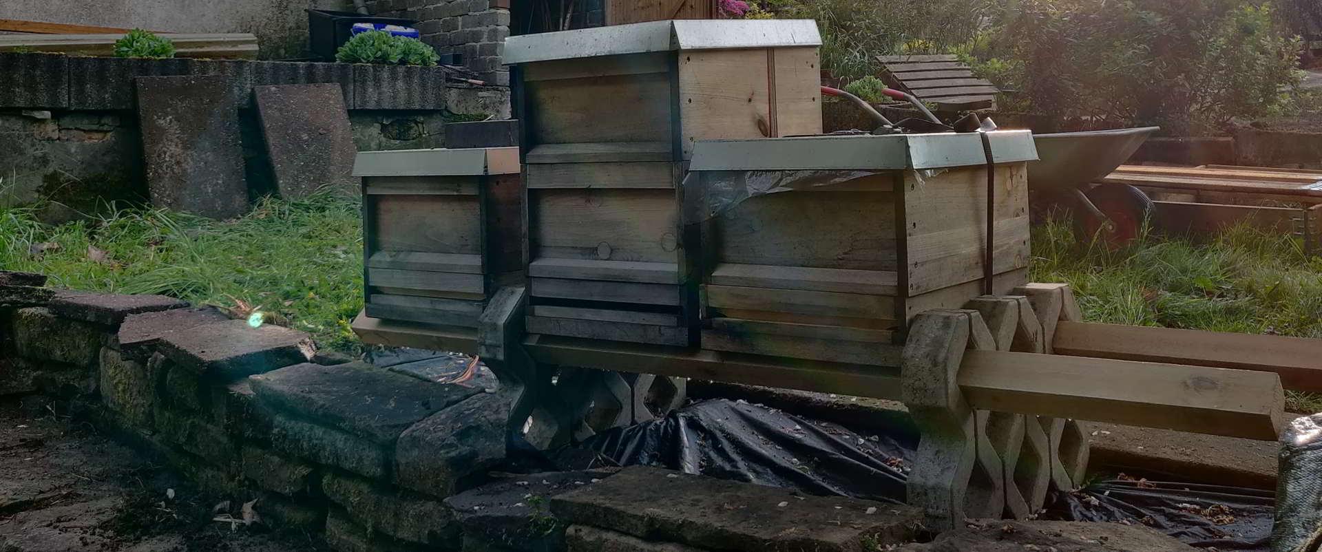 Standort der Bienenbeuten im Kleingarten