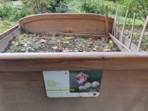 Dortmund Projekt - mein Beitrag: das Blumenbett