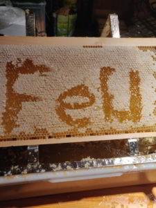 #Fernuni-Honig